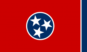 What Does the Tennessee State Flag Symbolize?