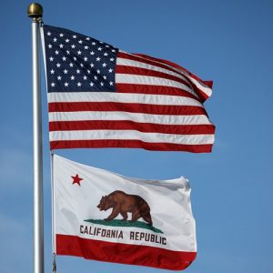 5 Fun Facts About California's State Flag